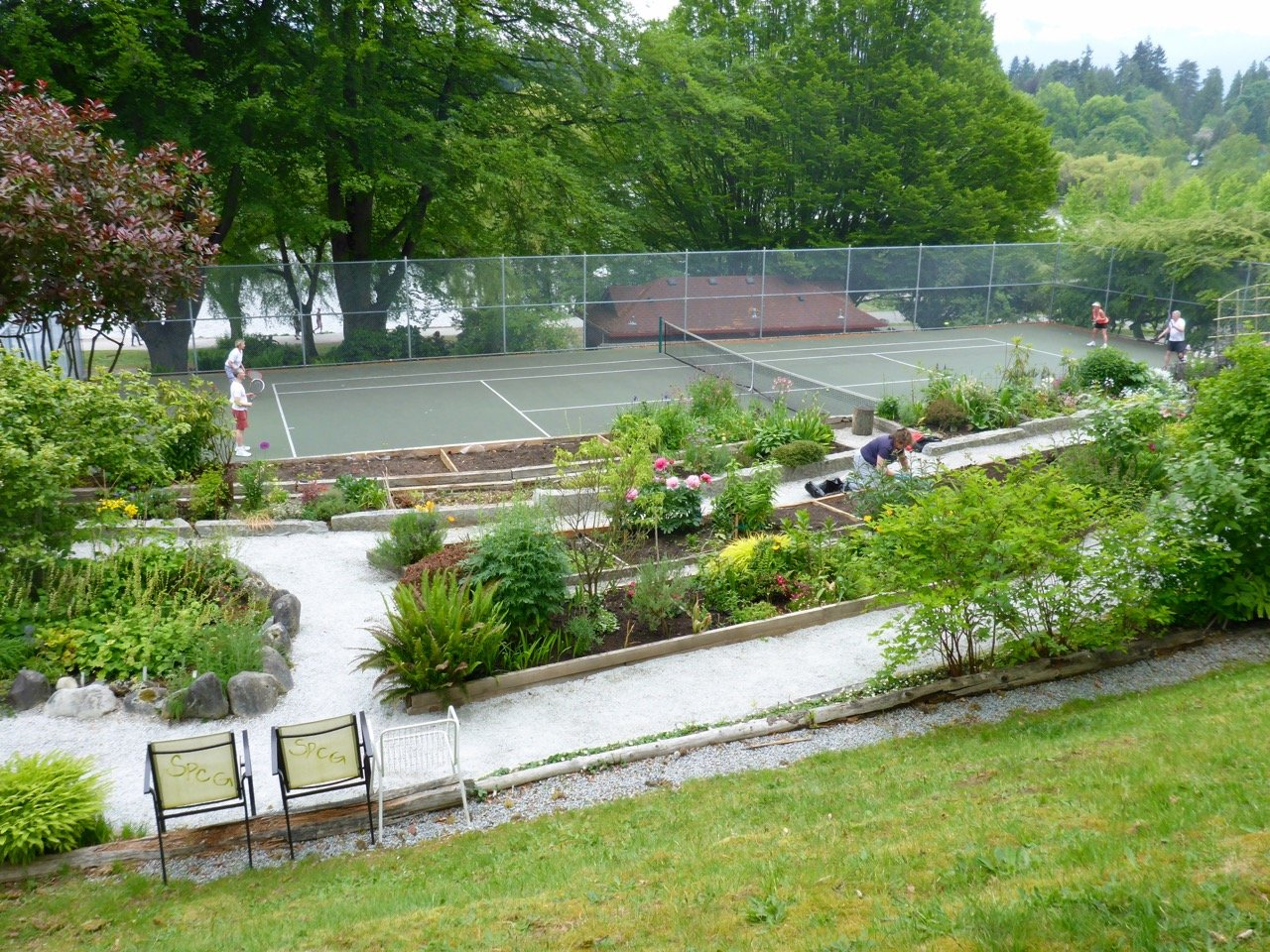 tennis-tourist-vancouver-lost-lagoon-tennis-courts-and-gardens-from-above-teri-church