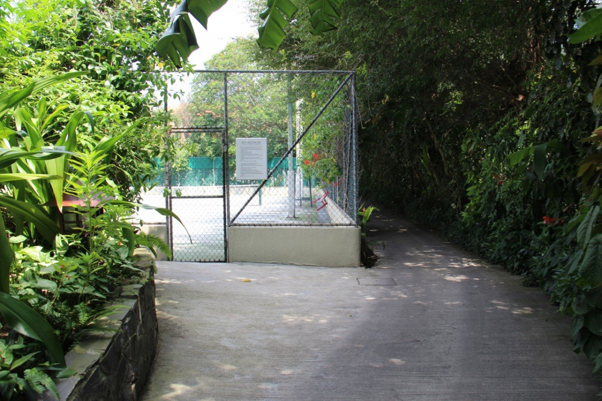 tennis-tourist-furama-hotel-tennis-court-garden-teri-church